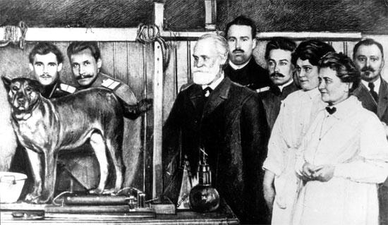 hoànglonghải – Vết Nám (Bài 8) Con chó của Pavlov
